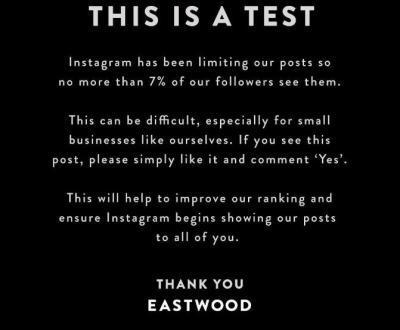 Правда или ложь: 5 слухов об алгоритме Instagram